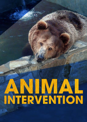 Animal Intervention - Season 1