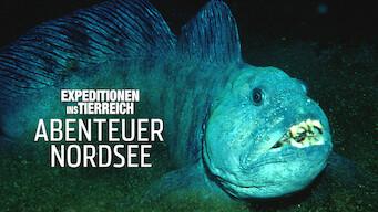 Abenteuer Nordsee (2007)