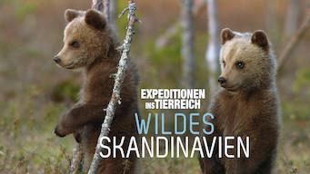 Wildes Skandinavien (2011)