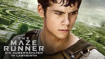 Maze Runner – Die Auserwählten im Labyrinth (2014)