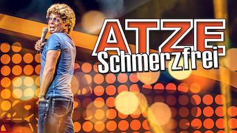Atze Schröder - Schmerzfrei (2012)