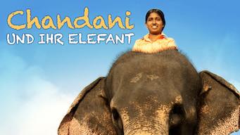 Chandani und ihr Elefant (2010)