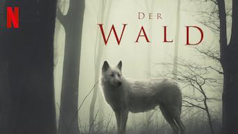 Der Wald (2017)