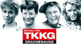 Ein Fall für TKKG - Drachenauge (1991)