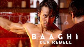 Baaghi – Der Rebell (2016)