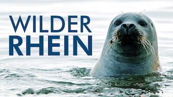 Wilder Rhein (2013)