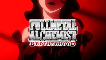 Fullmetal Alchemist: Brotherhood (2010)