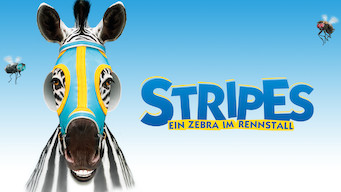 Stripes – Ein Zebra im Rennstall (2005)