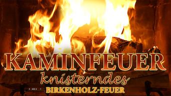 Kaminfeuer 4K: Knisterndes Birkenholz-Feuer (2015)