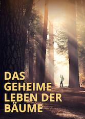 Search netflix Das geheime Leben der Bäume /